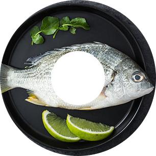 魚粉生產線